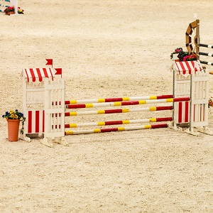 equestrian sand supplier